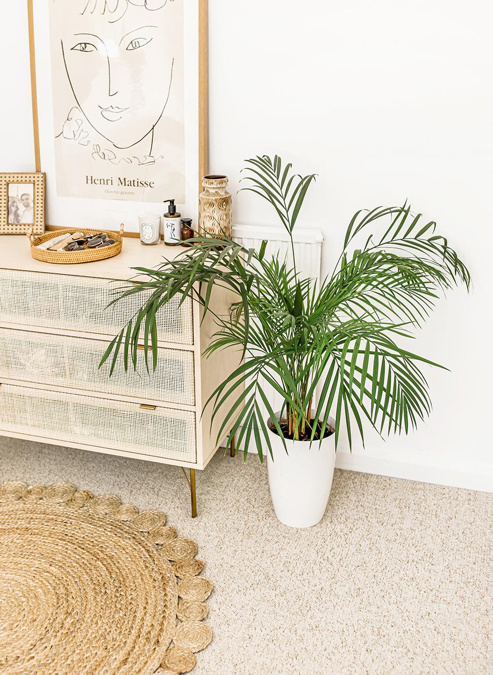 1-Acera-Palm-Chrysalidocarpus-lutescens-kelseyinlondon-homewithkelsey-plant-guide-best-indoor-plants