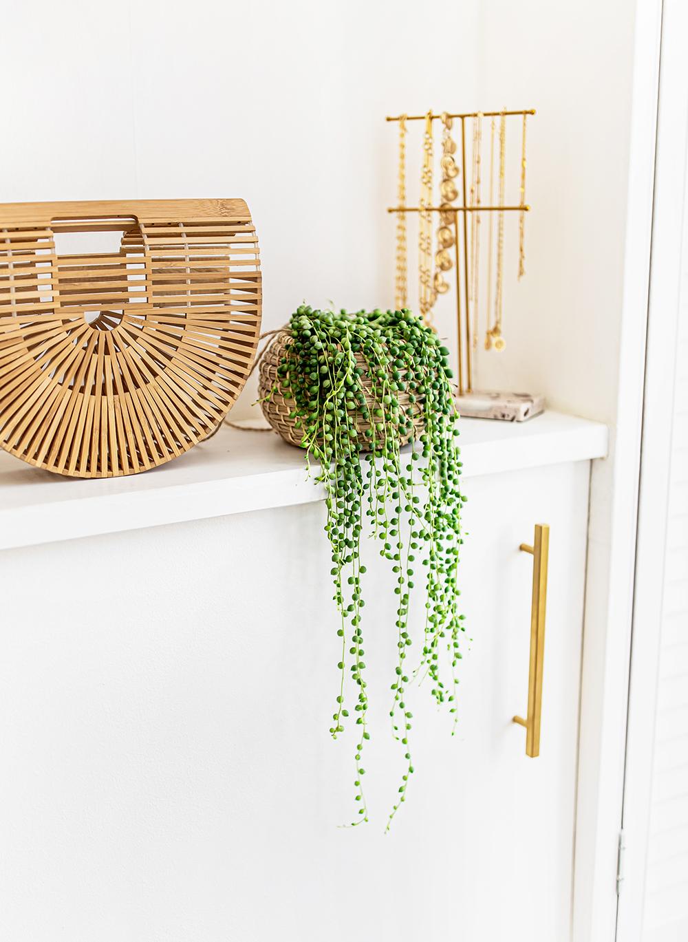 String-of-Pearls-Senecio-rowleyanus--kelseyinlondon-homewithkelsey-plant-guide-best-indoor-plants